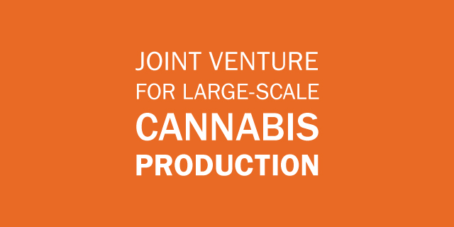 joint venture for large-scale cannabis production